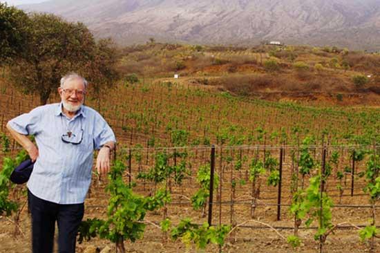 Dall'Isola di Fogo, vini che fanno bene all'anima appagando anche il palato